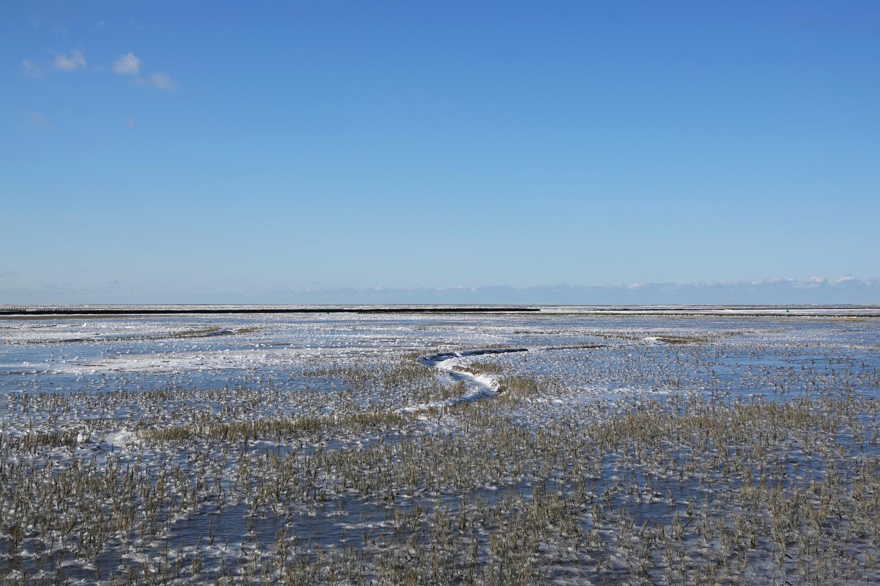 Bevroren Waddenzee (Noordpolderzijl)