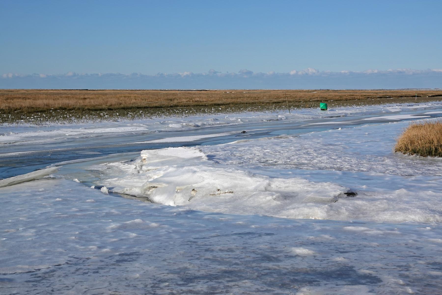 Bevroren kwelders Noordpolderzijl