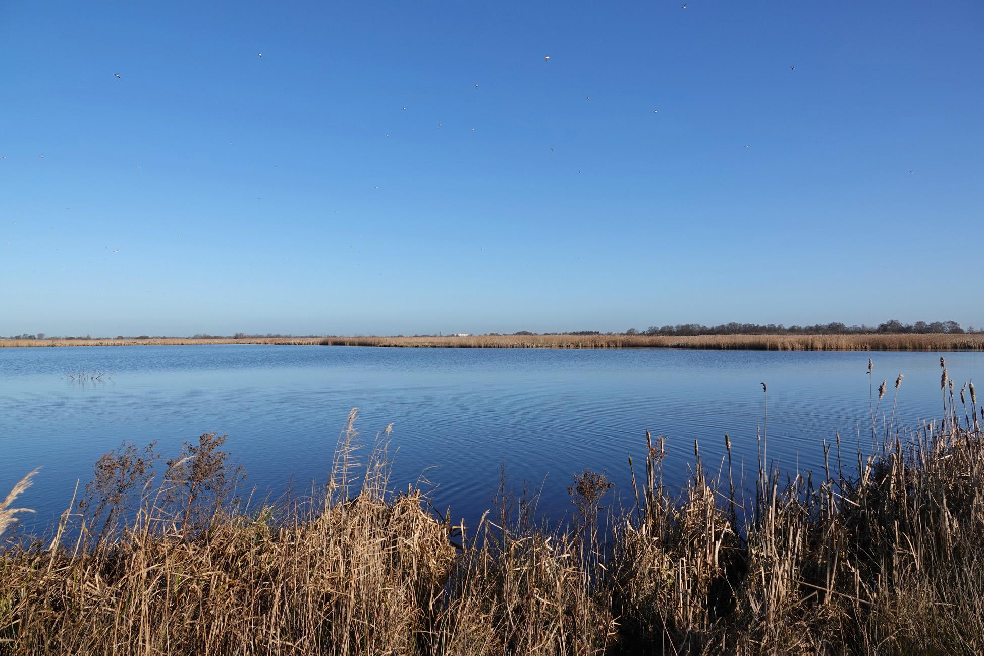 Langmameer (Onlanden)