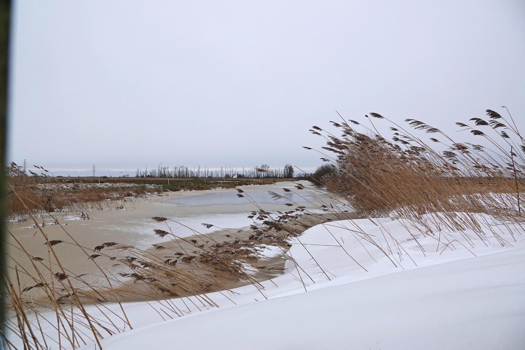 Sneeuw langs de Gouw (Onlanden)