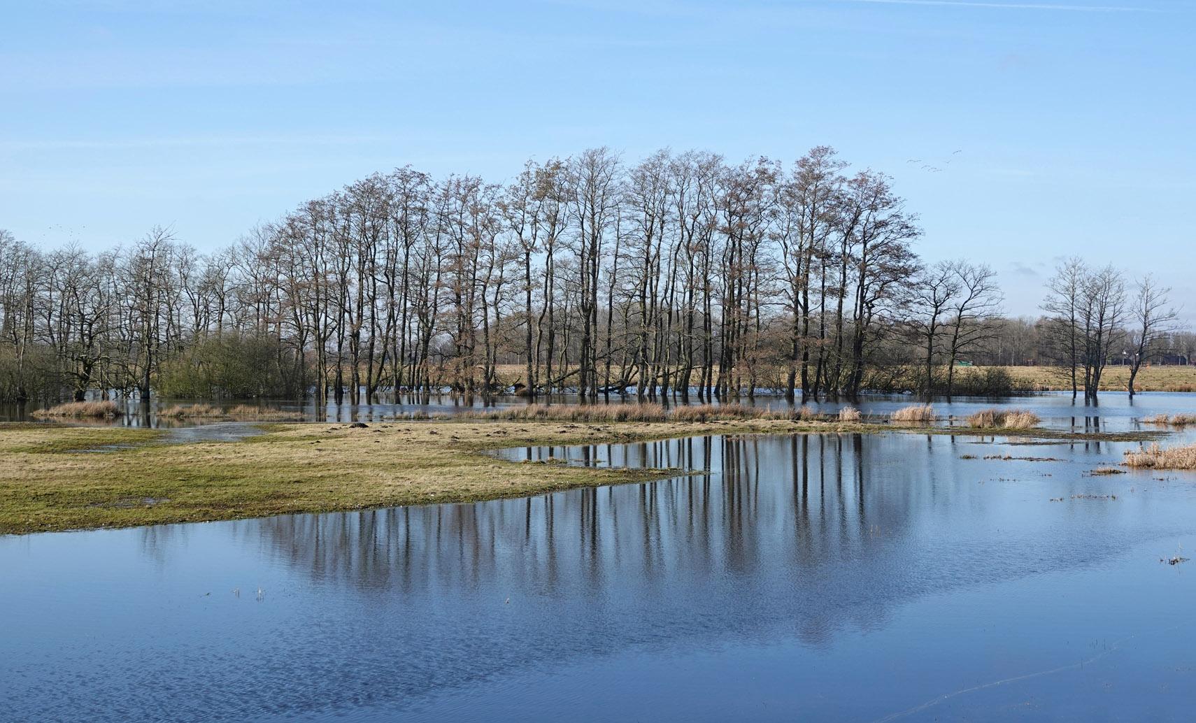 Tusschenwater (winter)
