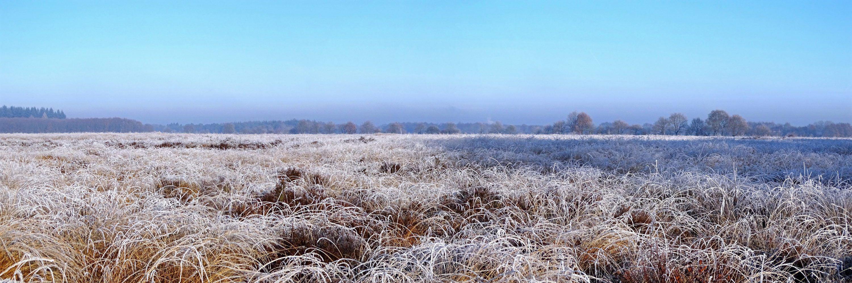 Noordsche veld
